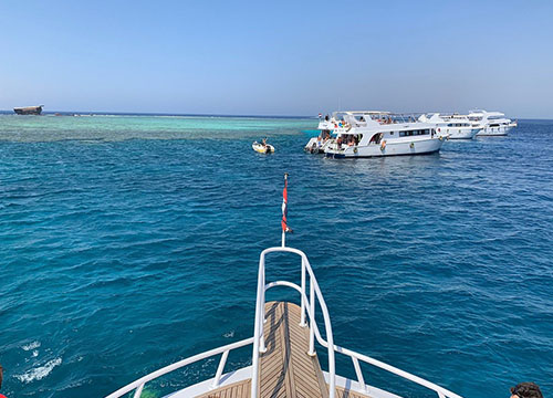 Red Sea Dinner Cruise with Entertainment Shows